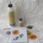 Pressing flowers for card making