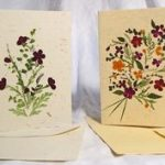 Pressed flower greetings card tutorial
